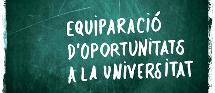 El tema: La discapacitat a lea aules. Equiparació d'oportunitats a la universitat